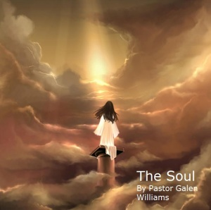 the-soul-1